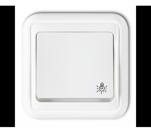 Łącznik zwierny światło biały WPH-5