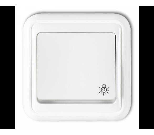 Łącznik zwierny światło biały WPT-5