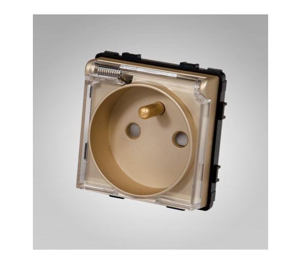 Gniazdo z klapką, z bolcem, modułowe, złote TM6252g