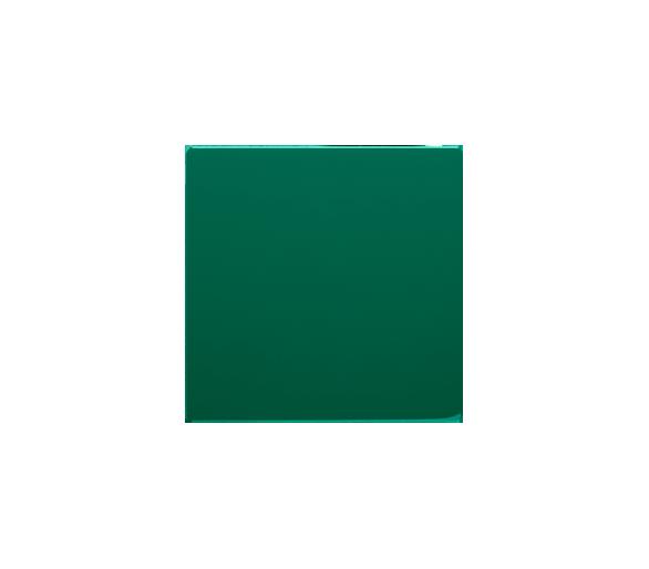 Klawisz pojedynczy do łączników i przycisków zielony