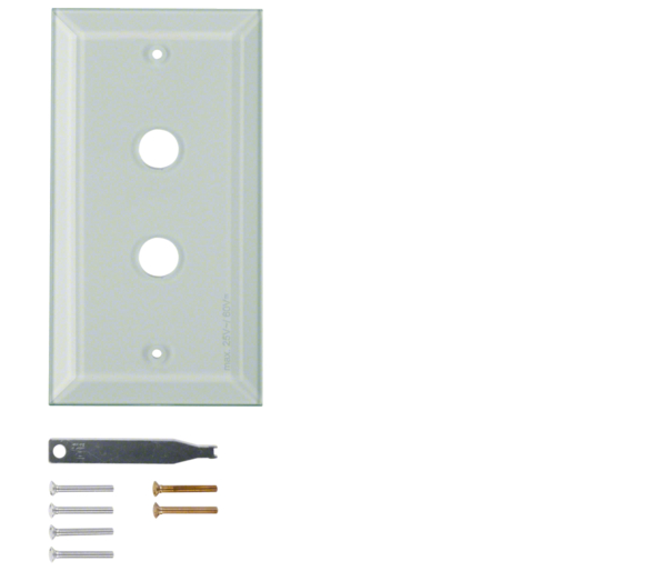Berker TS Szklana płytka dekoracyjna 2-kr ze ściętymi brzegami, szkło bezbarwne Berker 1321