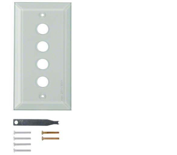 Berker TS Szklana płytka dekoracyjna 4-kr ze ściętymi brzegami, szkło bezbarwne Berker 1341