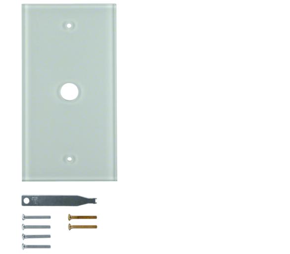 Berker TS Szklana płytka dekoracyjna 1-kr, śnieżnobiały błyszczący Berker 1391