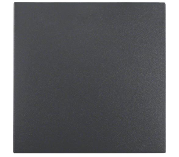 B.X Klawisz do łączników 1-klaw., ant mat Berker 16201606