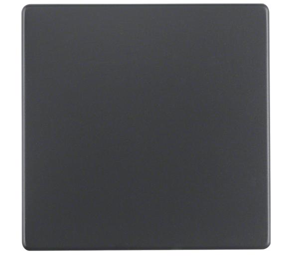Q.x Klawisz do łącznika 1-klawiszowego, antracyt, aksamit Berker 16206086