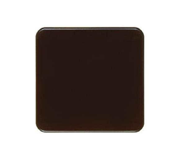 IP44 Klawisz, brązowy, p/t Berker 155001