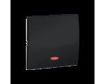 Klawisz pojedynczy z oczkiem do łączników i przycisków podświetlanych grafit mat, metalizowany MKW1L/28