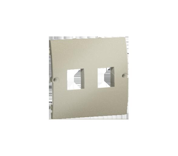 Pokrywa gniazd teleinformatycznych na Keystone płaska podwójna platynowy, metalizowany