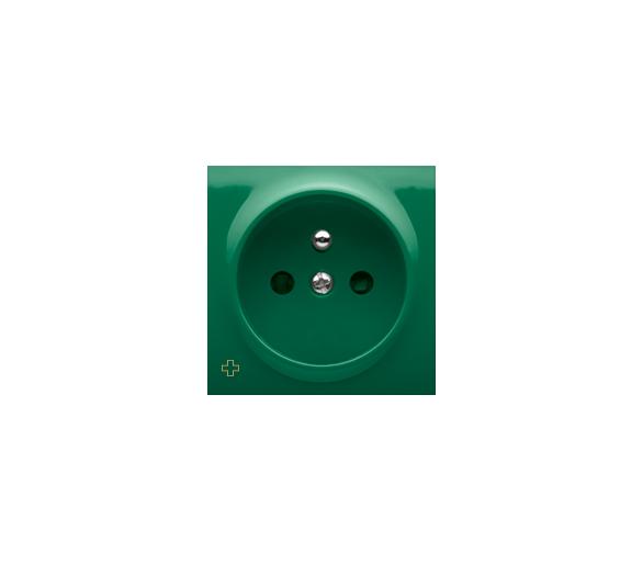Pokrywa do gniazda wtyczkowego pojedynczego z uziemieniem antybakteryjny zielony DGZ1ZP/AB33