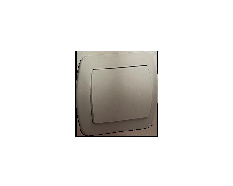 Łącznik jednobiegunowy satynowy, metalizowany 10AX AW1/29