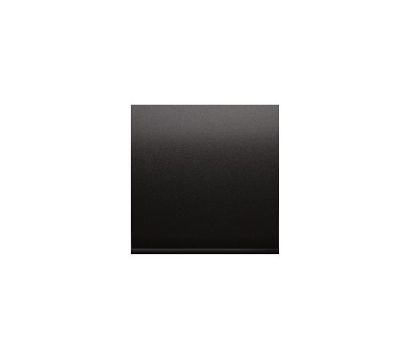 Zaślepka bez mostka antracyt, metalizowany DP/48