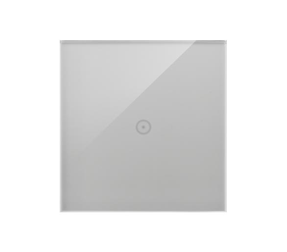 Panel dotykowy 1 moduł 1 pole dotykowe, srebrna mgła DSTR11/71