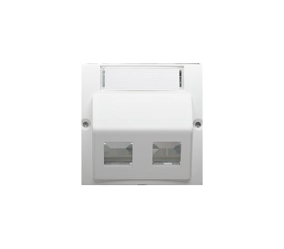 Pokrywa gniazd teleinformatycznych na PANDUIT, skośna podwójna z polem opisowym biały BMGPS2P.02/11